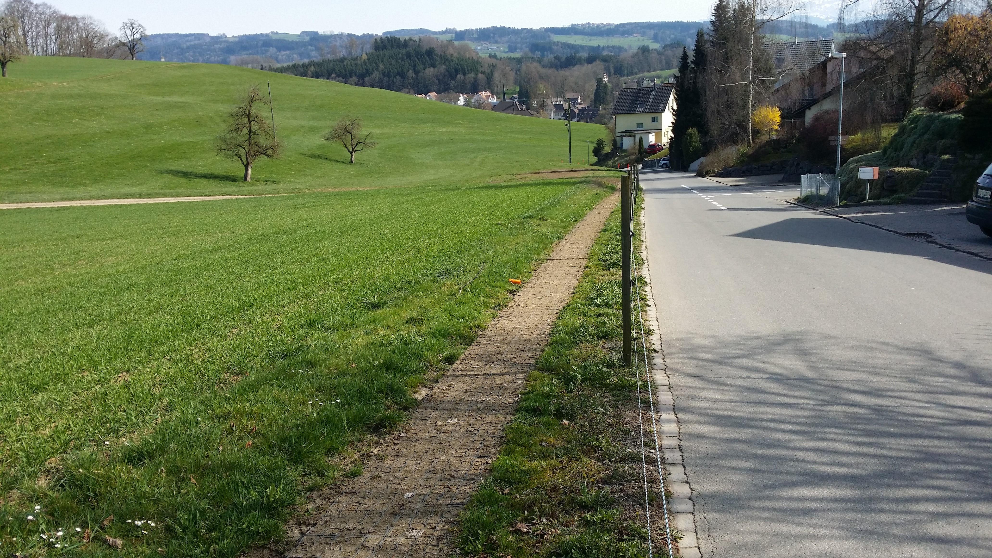 Schweiz_DirimAG_Ecoraster E50 Weideweg Schiess 9213 Hauptwil TG Weideeingang (2)