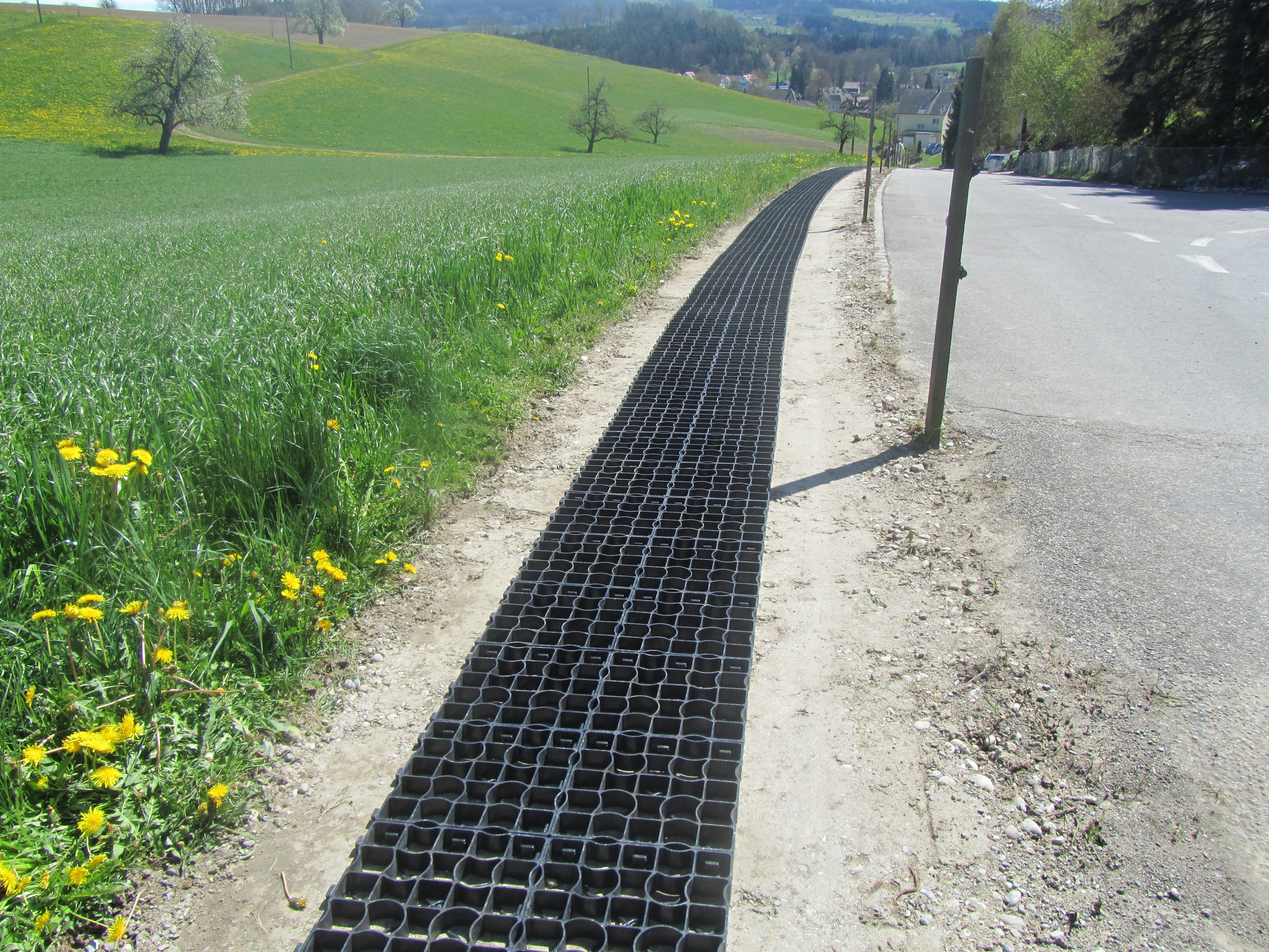 Schweiz_DirimAG_Ecoraster E50 Weideweg Schiess 9213 Hauptwil TG Weideeingang (5)