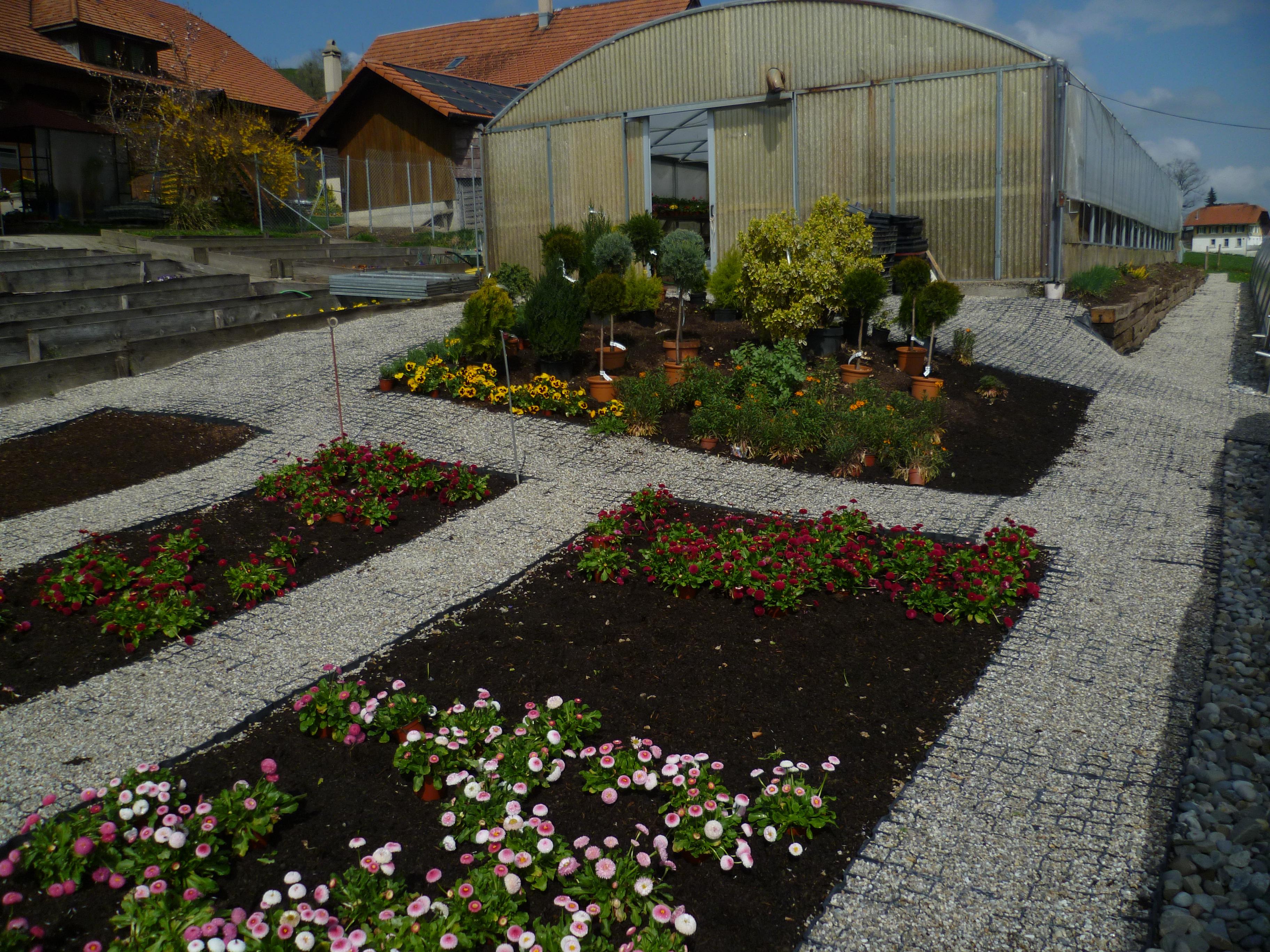 Schweiz_DirimAG_Ecoraster Gartenbau Eicher 6170 Schüpfheim LU (2)